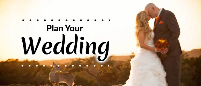 BANNER: PLAN YOUR WEDDING